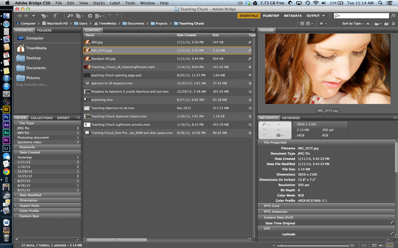 Adobe Bridge CS6 Updated to 5.0.2 without Retina
