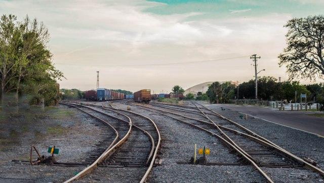 train fernandino photo